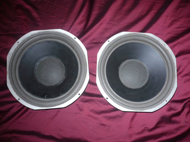 ESS AMT 12coll woofer front.JPG